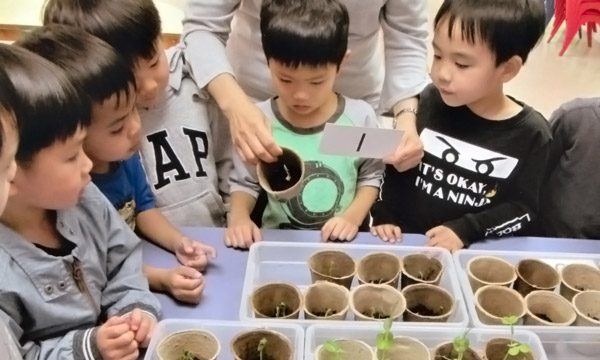 Students get hands on experience when learning about trees and plants.